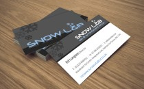 Snow Lab – Business Cards