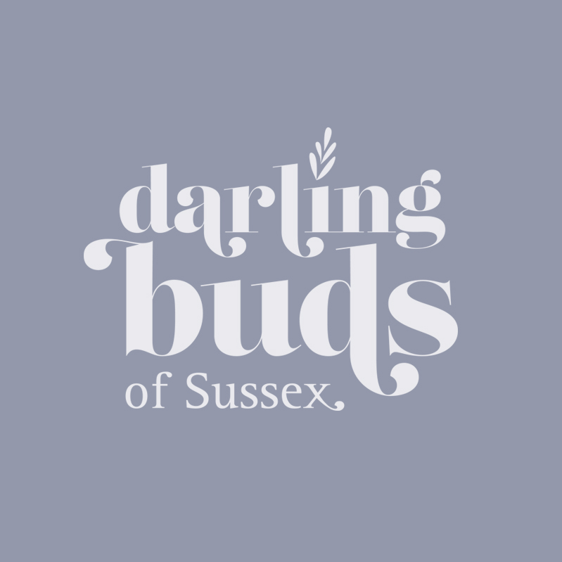 Branding Design Eastbourne East Sussex